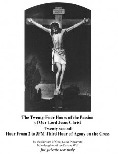 Twenty second Hour From 2 to 3PM Third Hour of Agony on the Cross