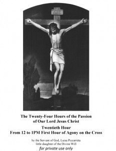 Twentieth Hour From 12 to 1PM First Hour of Agony on the Cross
